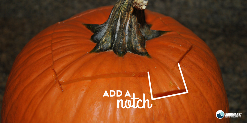 Make sure your pumpkin has a notch at the top for easy removal.