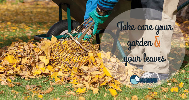 image showing how to get your garden and leaves ready for fall