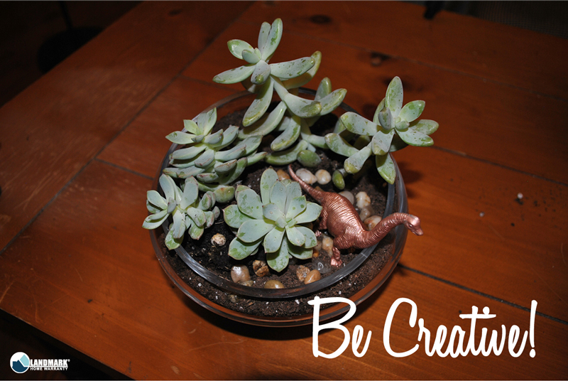 Be creative with your succulents!