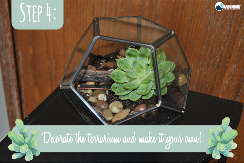 Step 4: Decorate your terrarium and be creative!