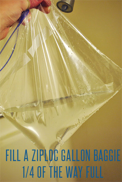 Fill a gallon bag with vinegar, around a quarter of the way full.